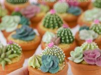 3D Cookie Pots with edible succulents